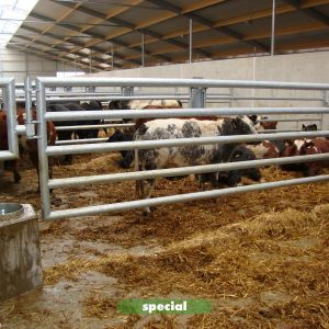 bleijenberg-1-003-special-partition-barrier-spinder-dairy-housing-systems
