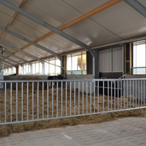 dsc-1322-partition-barrier-spinder-dairy-housing-systems