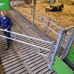 cuddle-box- preparation rotatable gate open -spinder-dairy-housing-concepts-spinder006071